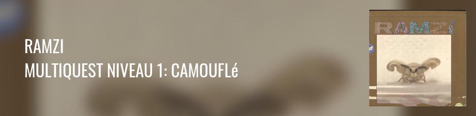 RAMZi - Multiquest Niveau 1: Camouflé Banner