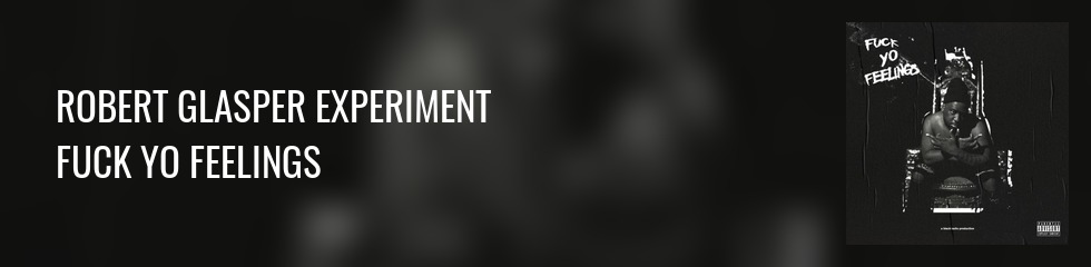 Robert Glasper Experiment - Fuck Yo Feelings (2LP) Banner